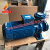 Máy bơm chữa cháy Pentax CM65-200B 25HP
